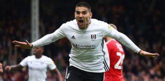 Tottenham-Revive-Interest-Aleksandar-Mitrovic