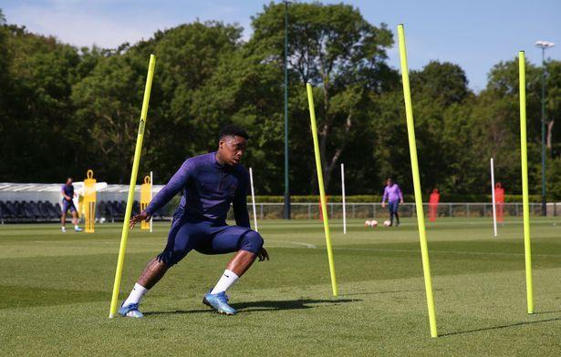 Steven-Bergwin-Tottenham-training